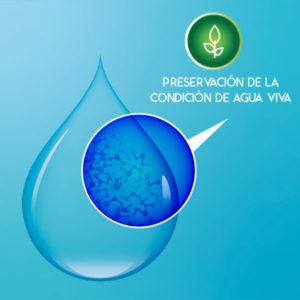 agua-splendor-agua-viva
